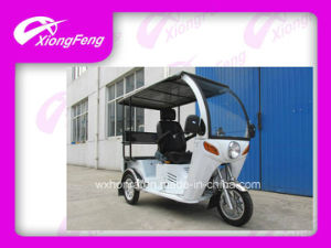 110cc Disabled Tricycle with Passenger Seat pictures & photos