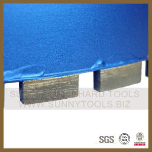 Roof Segment Crown Segment Cutting pictures & photos