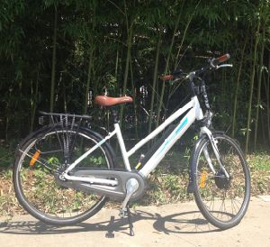 City E-Bicycle with 36V Lithium Battery pictures & photos
