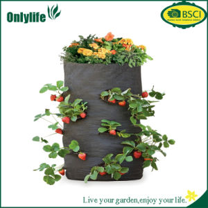 Onlylife PE Fabric Garden Grow Bag for Vegetables Flowers pictures & photos