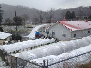Winter Farm Frost Cover pictures & photos