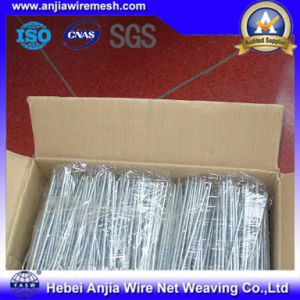 Hot-Dipped Galvanized Iron Wire for Building Materials with SGS pictures & photos