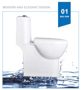 Weidansi Ceramic Siphonic S-Trap One Piece Toilet (WDS-T6123) pictures & photos