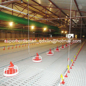 Top Quality Automatic Full Set Poultry Farming Equipment pictures & photos