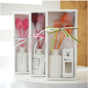 Aroma Diffuser Gift Set, OEM Factory pictures & photos