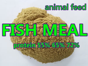Fishmeal with Competitive Price Protein 65% 72% pictures & photos