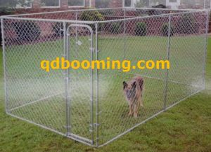 Galvanized Chain Link Dog Kennels with Roof pictures & photos