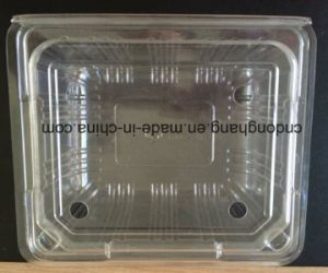 Cup Lid Machine (DHBGJ-350L) pictures & photos