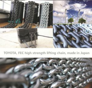 (DIA 11.2) Fec G80 Chain Hoist pictures & photos