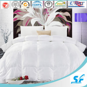 Wholesale Hotel Duvet Hotel Goose Down Duvet/ Chinese Silk Duvet pictures & photos