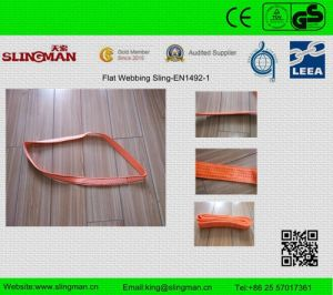 En1492-1 Single Ply Endless Web Sling (TS-W12-1)