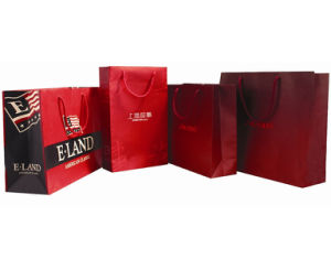 2016 New Design Luxury Paper Bag, Shopping Paper Bag pictures & photos