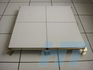 Top Quality Raised Access Floor for Data Center pictures & photos