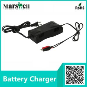 12V / 24V Electric Wheelchair Battery Charger with Socket pictures & photos