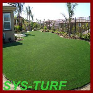 Economical Fake Grass Carpet for Garden pictures & photos