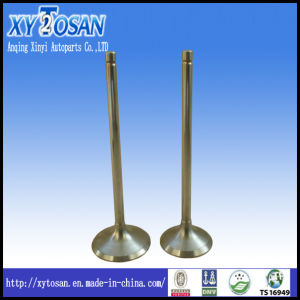Engine Valve for Daewoo Matiz/ Opel/ Man (ALL MODELS) pictures & photos
