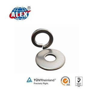 Stainless Steel DIN125 Spring Washer/ Flat Washer pictures & photos