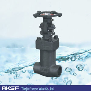 A105 Forged Steel Gate Valve pictures & photos