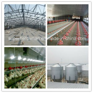 Prefabricated Structural Steel Chicken House Design pictures & photos