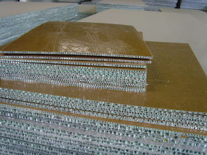 Custom Honeycomb Panels for Facades pictures & photos