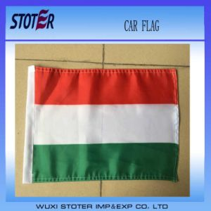 Blank Car Flags pictures & photos