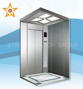 Stable & Standard Elevator Lift with Good Price (WP30, WPN30) pictures & photos