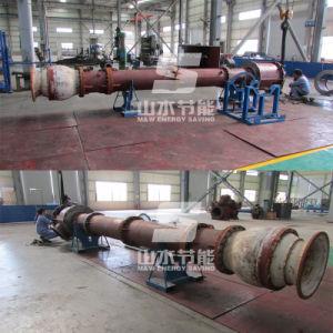 Vertical Long Shaft Pump pictures & photos