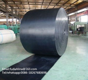 Heavy Duty Nylon Core Conveyor Belt pictures & photos