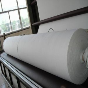 Polyester Woven Non-Woven Multifilament Geotextile pictures & photos