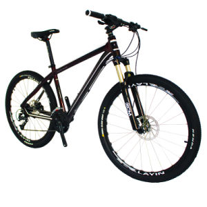 2015 New 27 Speed Aluminum Alloy Mountain Bike pictures & photos