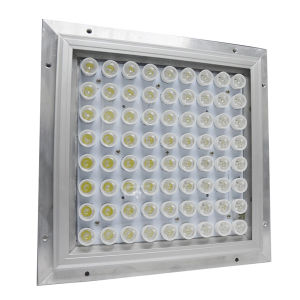 New Hot Sell IP65 Explosion-Proof LED Canopy Light pictures & photos