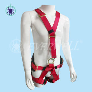 Full Body Harness with Waist Belt and EVA Block (EW0117H)