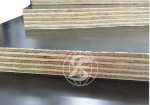F17/F14 Formply Plywood for Australia and Newzealand Market pictures & photos