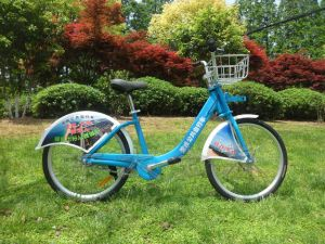 Public Bicycles-Brilliant Blue Double Shoulders and a Front Fork Bike pictures & photos