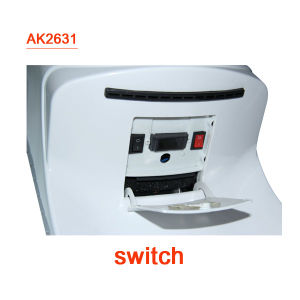 High Speed Hand Dryer with CE CB Certification(AK2631) pictures & photos