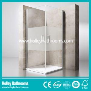 Pivot Door Double Doors Ground Glass Selling Simple Shower Door (SE703H)