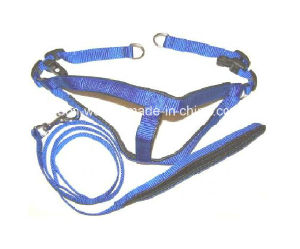 Nylon Webbing Pet Leash Collar