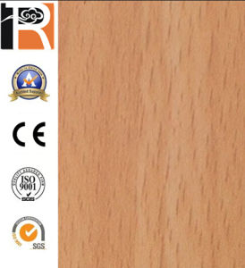 OEM Anti-Static HPL Floor (8312) pictures & photos