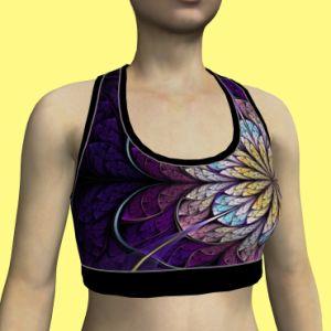 Custom Design Lesuire Style Sport Bra pictures & photos