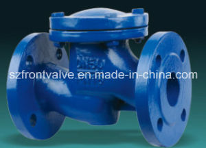 Cast Iron/Ductile Iron Flanged End Vertical Check Valves pictures & photos