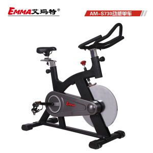 Commercial Exercise Bike with 18kgs Flywheel (S730) pictures & photos
