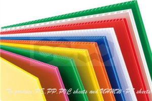 Colored Rigid PP Board with Reasonable Price