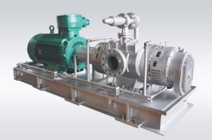 Rotary Screw Pump/Twin-Screw Pump/Petro Pump/Double Screw Pump pictures & photos