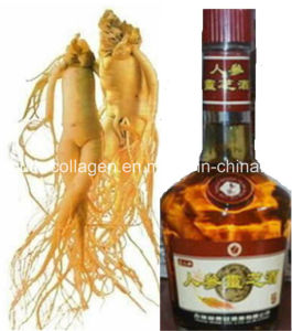 Wine, Top Ginseng Lucid Ganoderma Wine, Enhance Immunity, Enhance Memory, Promoting Meridian and Blood, Anticancer, 100%Natural Aphrodisiac Wine, Prolong Life pictures & photos