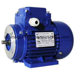 Industry Electrical Motor with Asynchronous Type pictures & photos