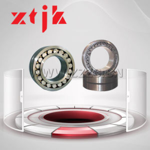 Best Quality China Factory Double Row Cylindrical Roller Bearing