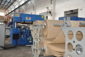 Hg-B100t Full Automatic Hydraulic Roller Feeding Roll Cutting Machine pictures & photos