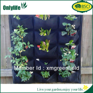 Onlylife Eco-Friendly Garden Hanging Bag Plant Grow Bag with Divided Holes pictures & photos