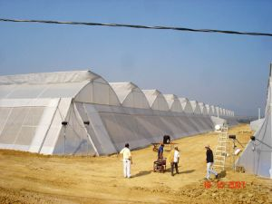 Greenhouse Netting, Anti Insect Net Mesh 50X25 pictures & photos