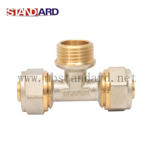 Brass Female Tee Pex Fitting pictures & photos